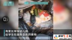 河北幼儿园给学生吃腐烂食物 教育局回应:园长停职